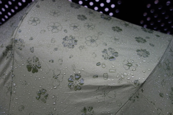 umbrella03