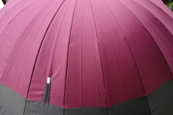 umbrella67
