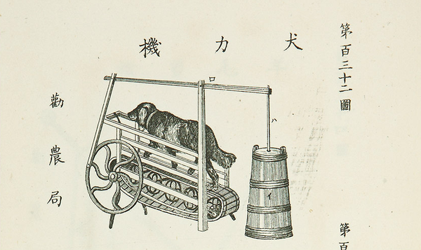 Working like a dog – Old-timey Japanese invention planned to turn pooch power into butter