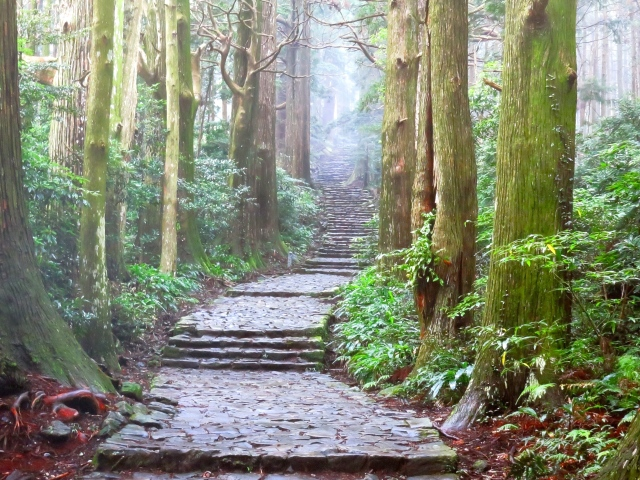 All about the Kumano Kodo, the World Heritage Sites of the Kii Peninsula【Pics & Video】