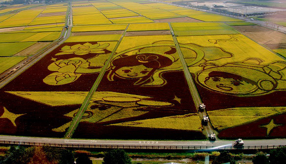 Stunning Saitama rice field art snags Guinness record