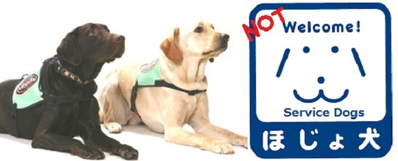 """""""No dogs allowed"""": Why one service dog was refused entrance to these restaurants in Japan"""