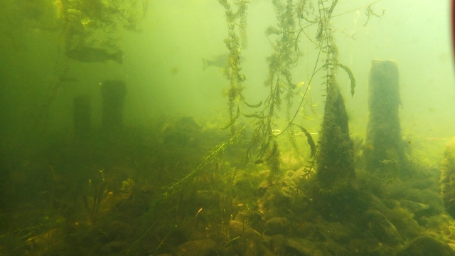 First, possibly most ironic, underwater ruins discovered in Japan's largest lake