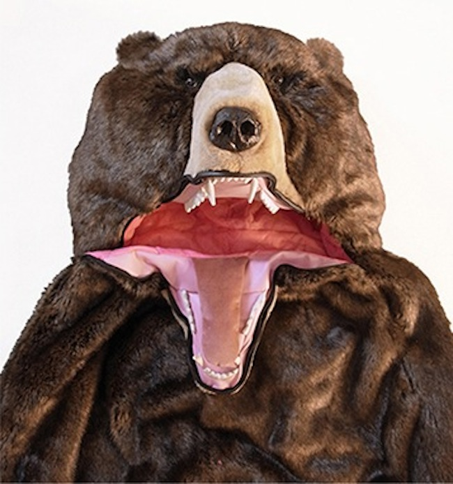 Bear 3