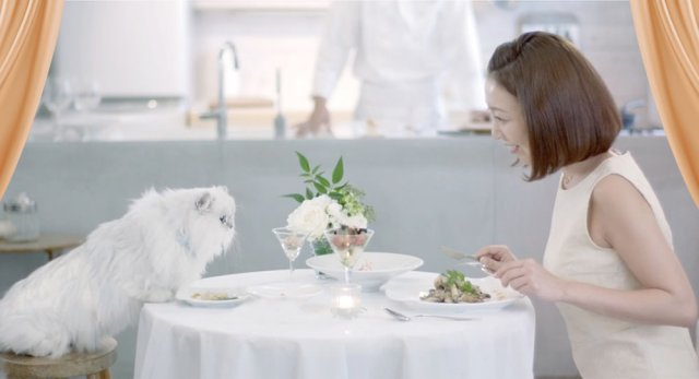 In Japan, a professional chef will come to your home and cook for you—and your cat【Video】
