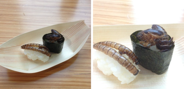 Wasp and mealworm sushi on the (unusual) menu at the Tokyo Bug-Eating Festival 【Photos】