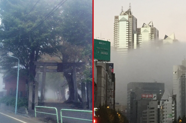Tokyo looks eerily awesome in the fog 【Photos】