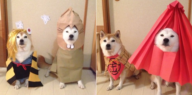 Shiba Inu dressed up as Japanese yokai achieve new level of cute and spooky