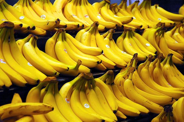 Necklace thief in India swallows stolen goods, police feed him 40 bananas to make him poop it out