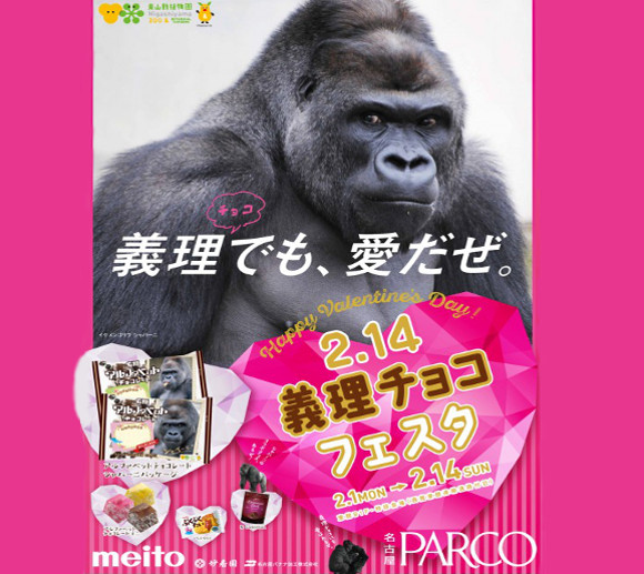 Shabani the gorilla is so handsome he'll be appearing on sweets in Japan this Valentine's Day