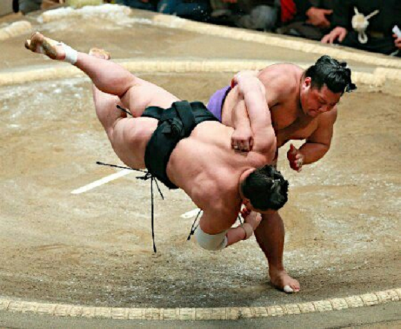 Combat math – Professional sumo wrestler's throw follows the golden ratio