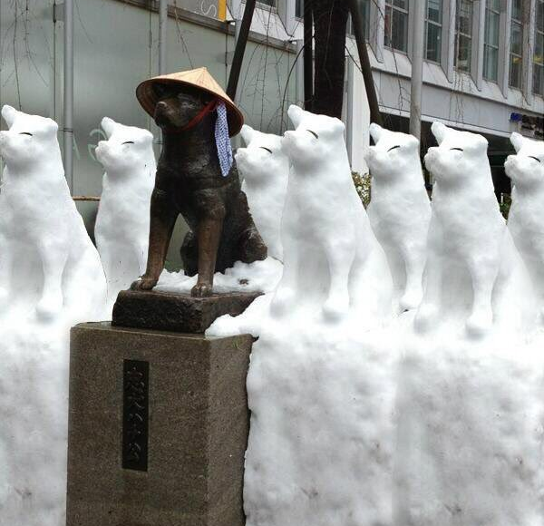 Sadly, seven sudden snow Hachikos in Tokyo are probably too cute to be true