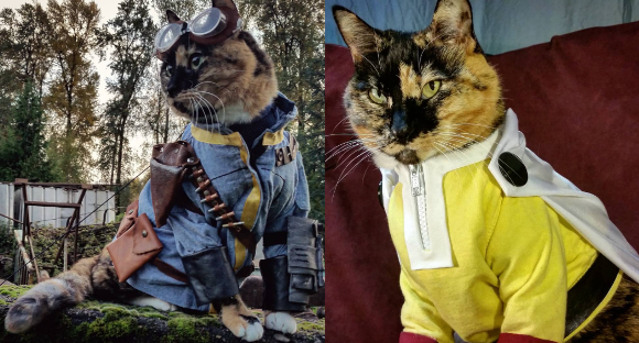 Cosplaying cat duo charm the world with their outfits and their adorable facial expressions