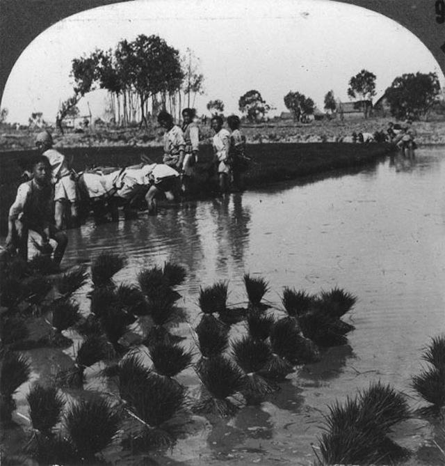 1930s_china_7