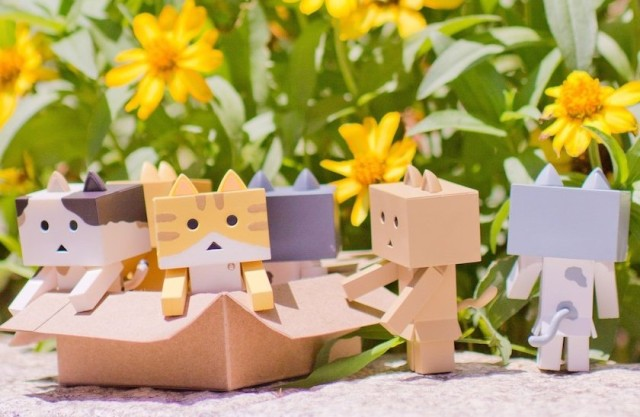 New anime features Nyanbo, the adorable box-shaped cardboard cat