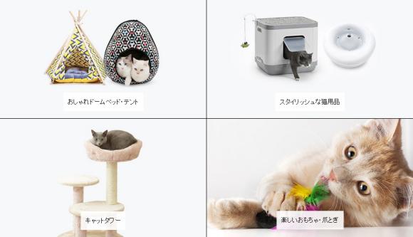 amazon cat store 01
