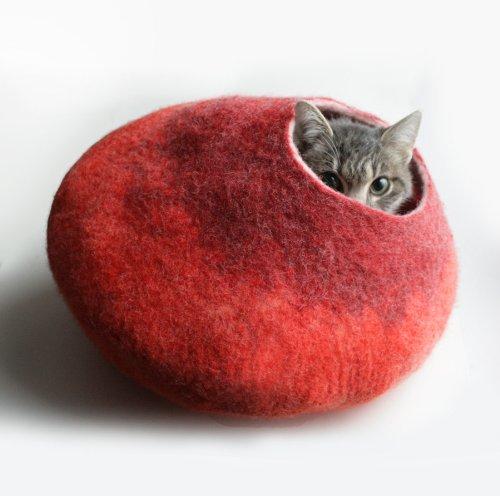 amazon cat store 03