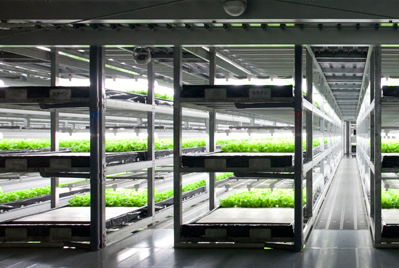 World's first robot-operated farm to start operations in Japan next year