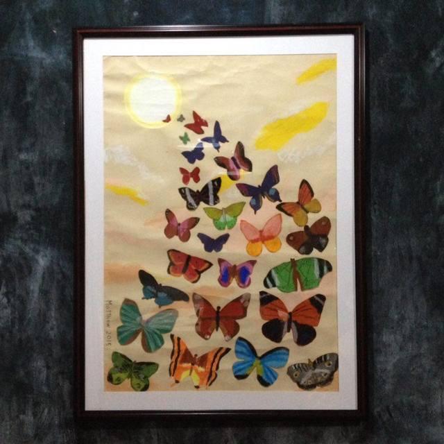 8_-_Butterflies_39B8B324F6AA49BFB4CCEECD632B3BFA