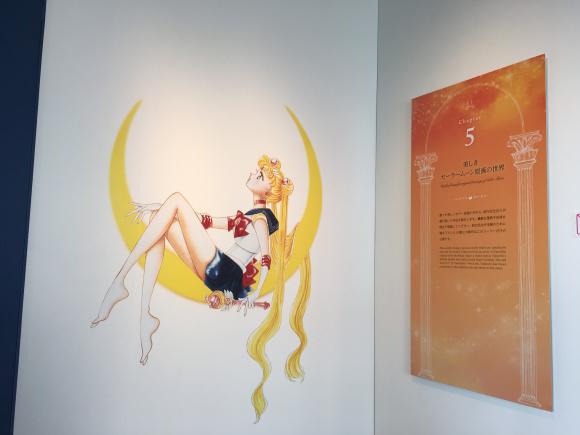 exhibit 8