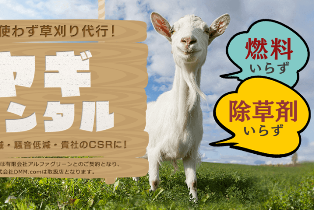 Rent-a-goat service now available in Japan, ready to fulfill all your goat-related needs
