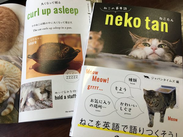 "Japanese book ""nekotan"" teaches foreign language the best way possible: by talking about cats"