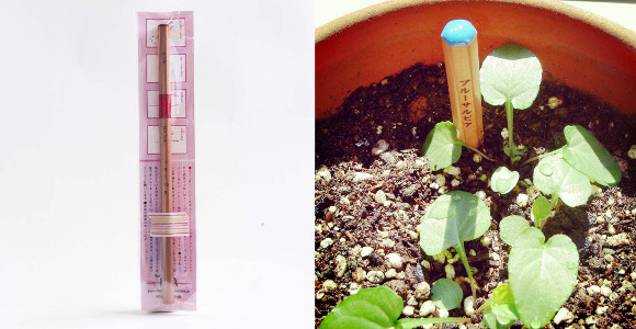 Japanese stationery now sprouts herbs in your garden with the Blooming Pencil