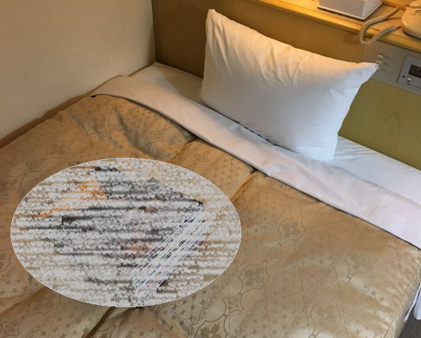 Japanese hotel guest leaves pile of erotic manga out, gets pleasant surprise from cleaning staff