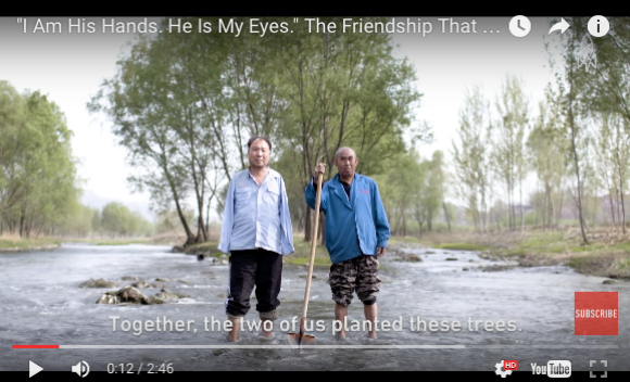Heartwarming video tells the story of a blind man and his armless friend who planted a forest