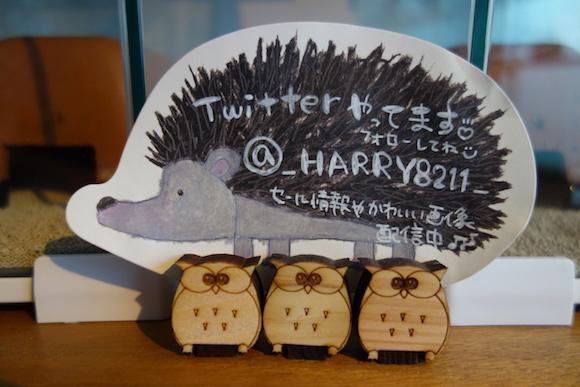 Hedgehog Cafe21