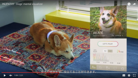 """""""INUPATHY"""" collar tells you what your dog is thinking via colors and phone messages【Video】"""