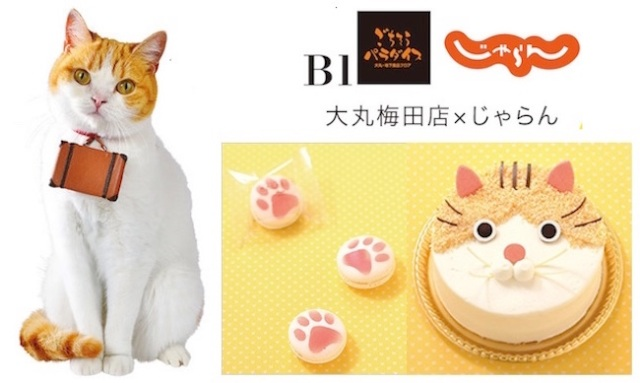 Nyaran the travel mascot cat goes edible and the results melt our hearts!