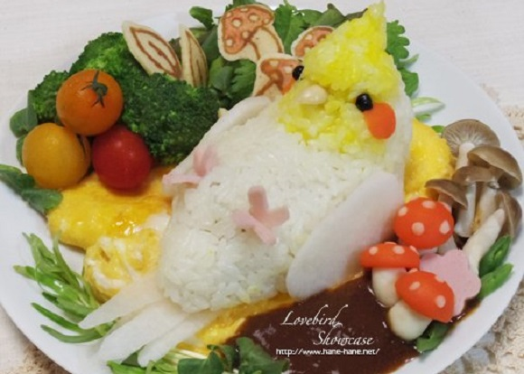 Why have chicken tonight, when you can have cockatiel omelet rice instead?!【Photos】