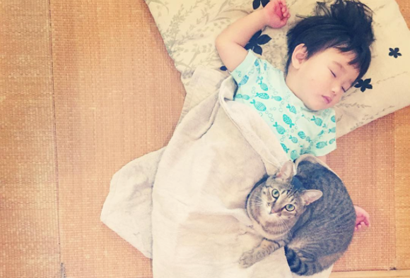 Adorable family of cats and children look out for each other during nap time and at play