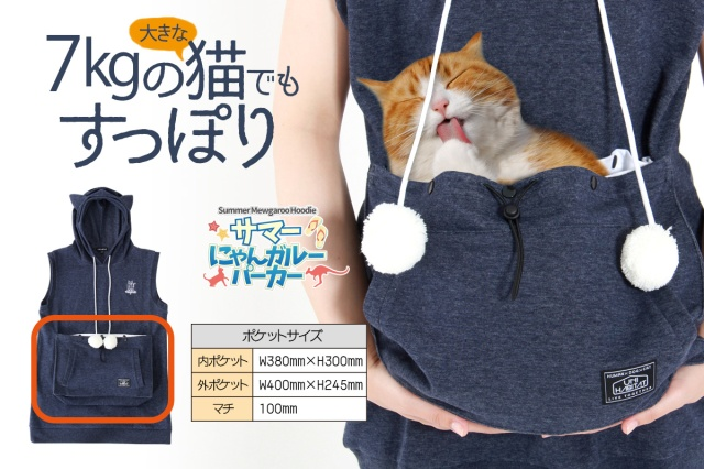 A hoodie with a pouch for holding cats (summer edition): Shut up and take my money!