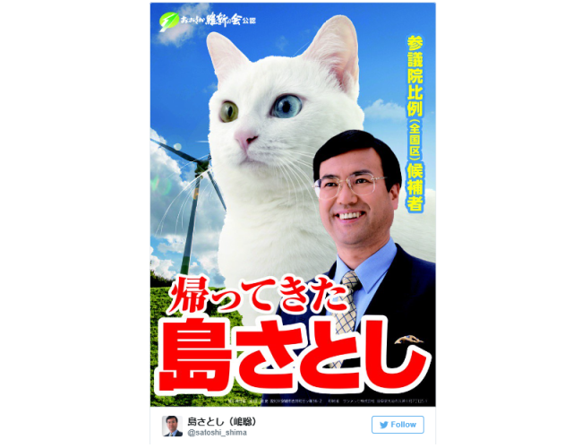 Japanese politician's election plan: Put a gigantic, adorable cat on his campaign poster