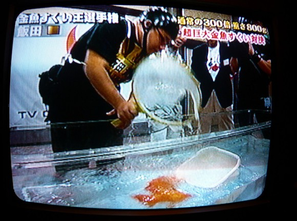 Japanese TV Show by S. via flickr