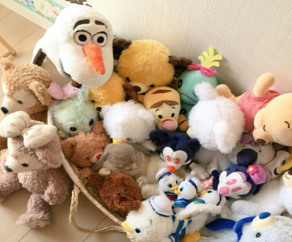 "Japanese pet creates adorable ""Where's Waldo?"" game by napping in pile of soft animals"