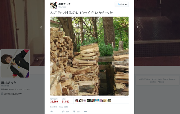 Can you spot the cat? The picture puzzling the world is now driving Japanese people crazy too!