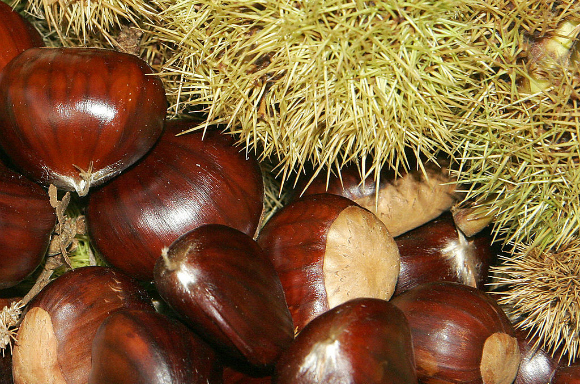 Japanese snack maker releases boxes of chestnuts peeled by hot guys
