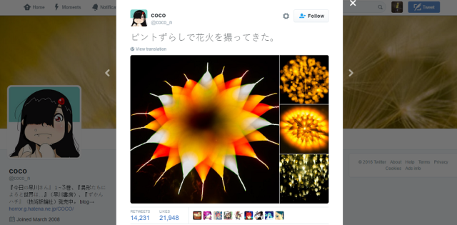 "Fireworks photos make us wonder if we're seeing ""fire flowers"" or microscopic organisms【Photos】"