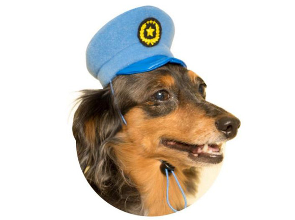 Turn your pets into cute police officers with a hat from a Japanese vending machine!