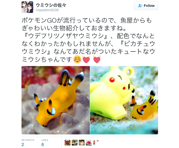 Pokémon Go craze reignites love for cute Pikachu sea slug in Japan