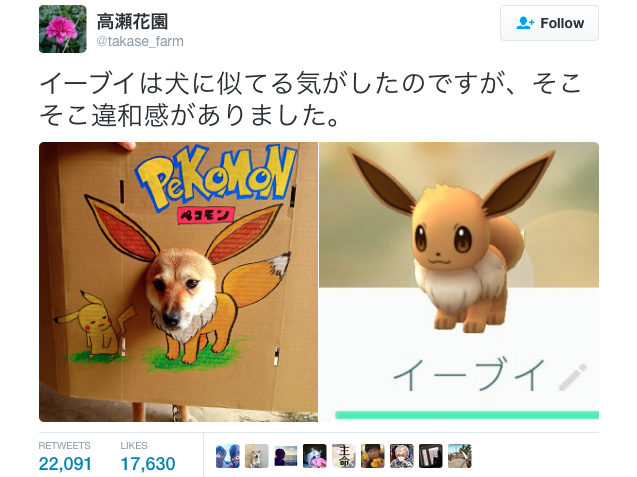 Japanese pet owner illustrates likeness between adorable Shiba Inu and Pokémon Eevee