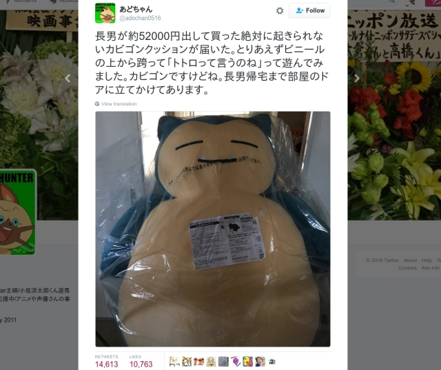 Life imitates anime as huge Snorlax beds show up in Japan, become roadblocks in homes【Pics】