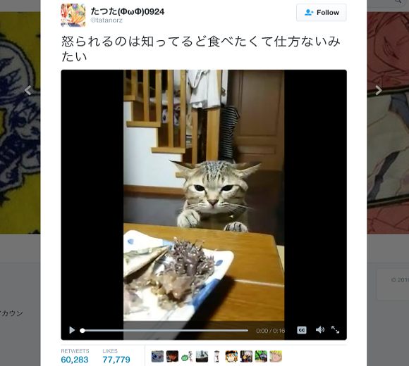Cute cat fights yearning desire to eat food on table with adorable results【Video】