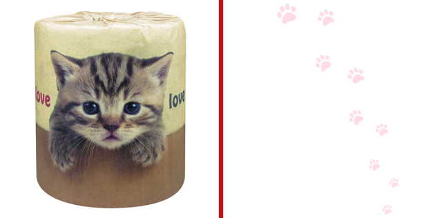 Japan's new custom-order cat-theme toilet paper lets you wipe your butt with cuteness