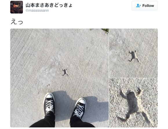 Social media users in Japan gripped by the mysterious case of the frog-shaped hole in concrete