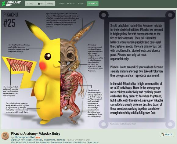 Artist illustrates amazingly accurate representations of Pokémon anatomy【Pics】