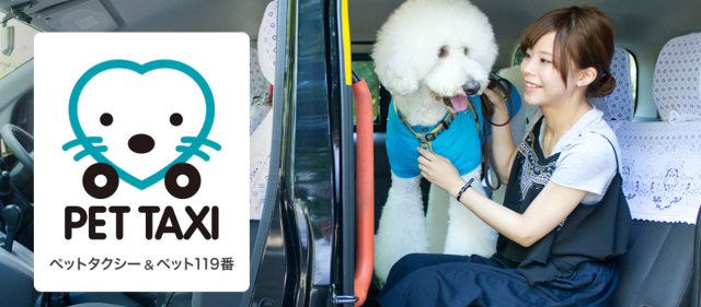 Japan's vaunted taxi service to be offered to dogs and cats with new Pet Taxis
